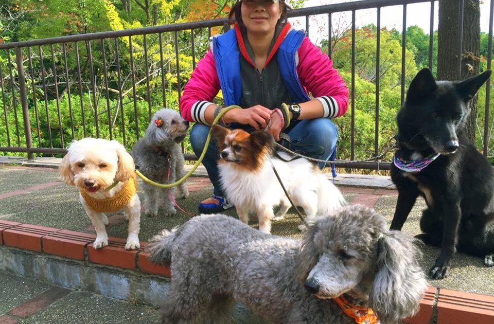 ペットメンタルヘルス協会 代表、神戸のペットホテル ペットシッターかわい  代表